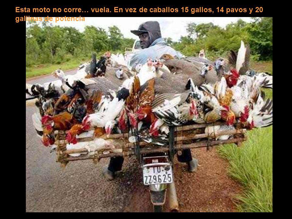 Esta moto no corre… vuela
