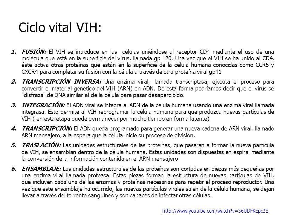 Ciclo vital VIH: