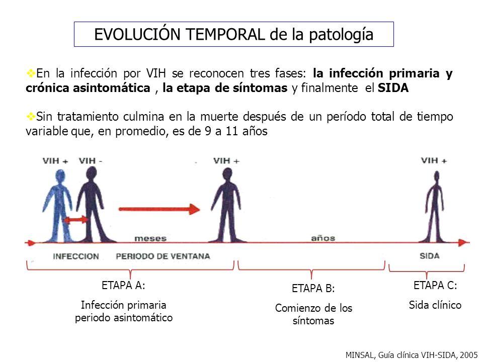 EVOLUCIÓN TEMPORAL de la patología
