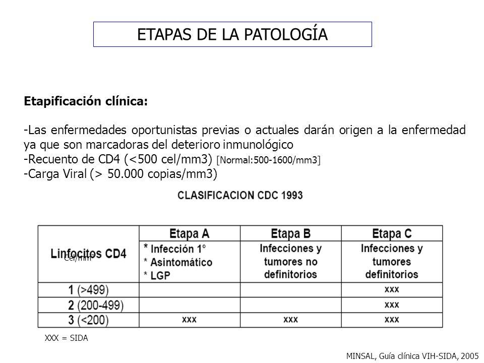 ETAPAS DE LA PATOLOGÍA Etapificación clínica: