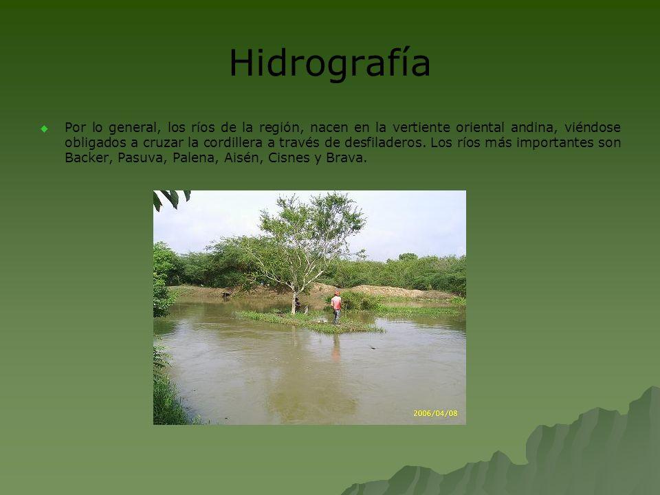 Hidrografía