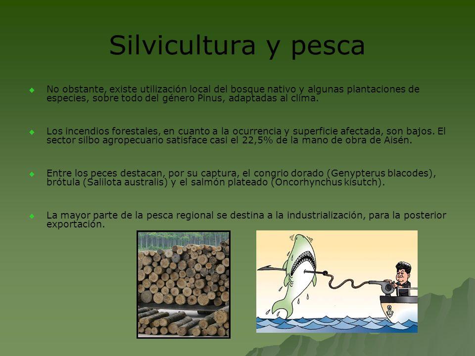 Silvicultura y pesca