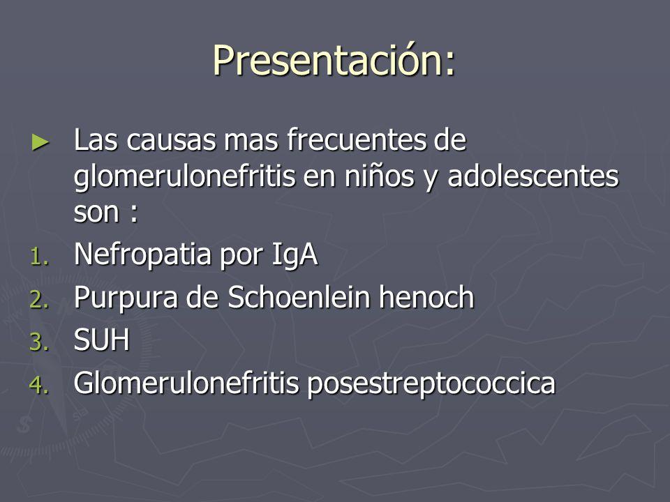 Presentación:Las causas mas frecuentes de glomerulonefritis en niños y adolescentes son : Nefropatia por IgA.