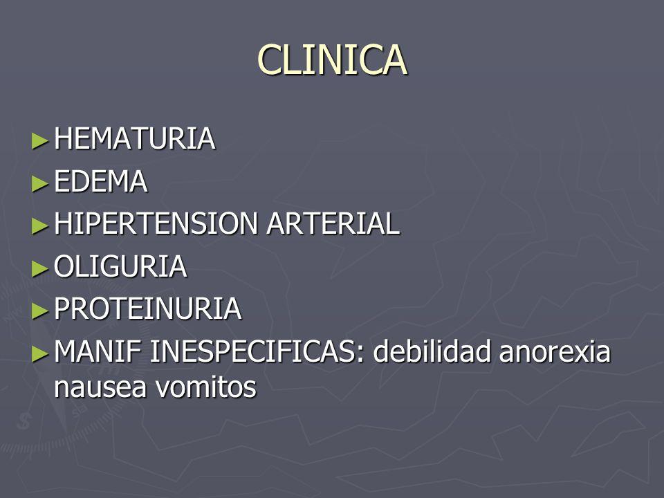 CLINICA HEMATURIA EDEMA HIPERTENSION ARTERIAL OLIGURIA PROTEINURIA