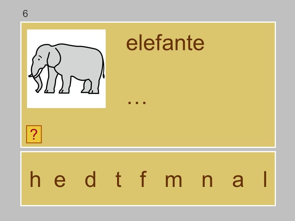 6 elefante … h e d t f m n a l