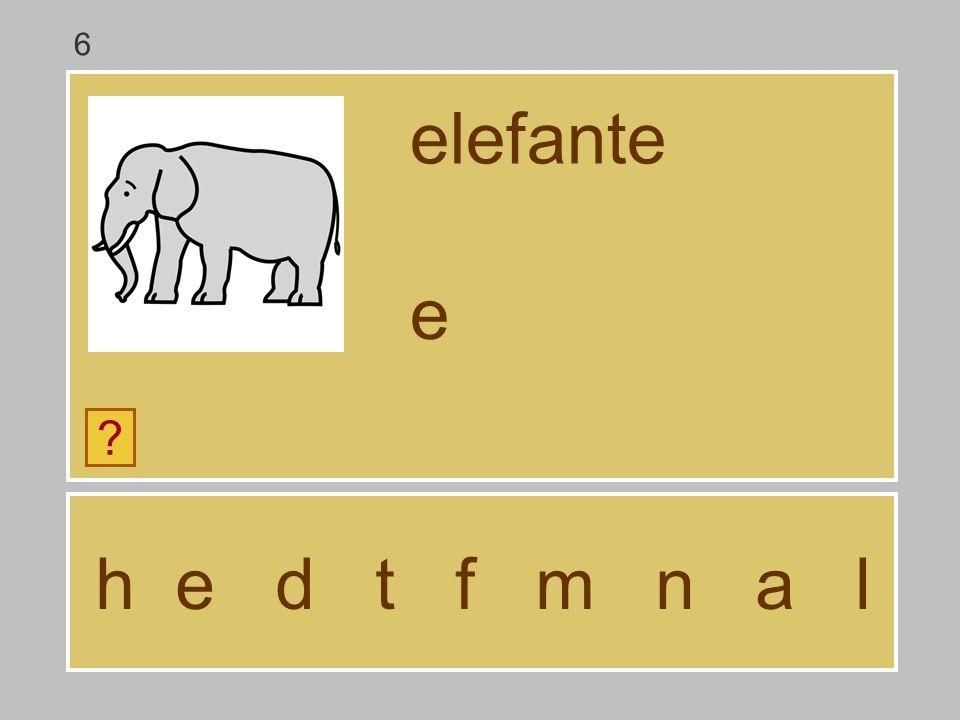 6 elefante e h e d t f m n a l