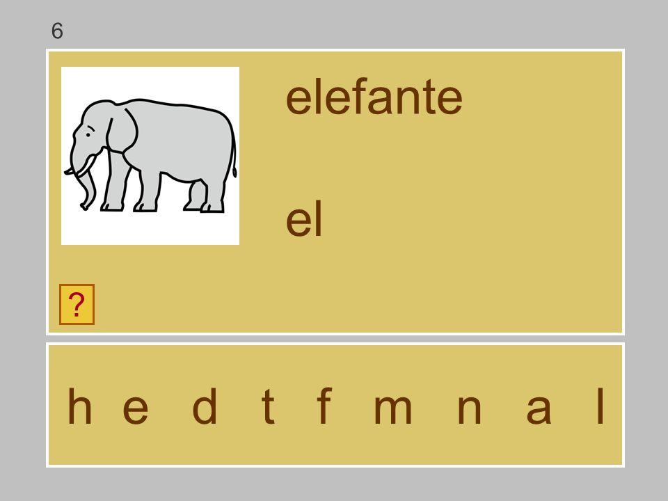 6 elefante el h e d t f m n a l