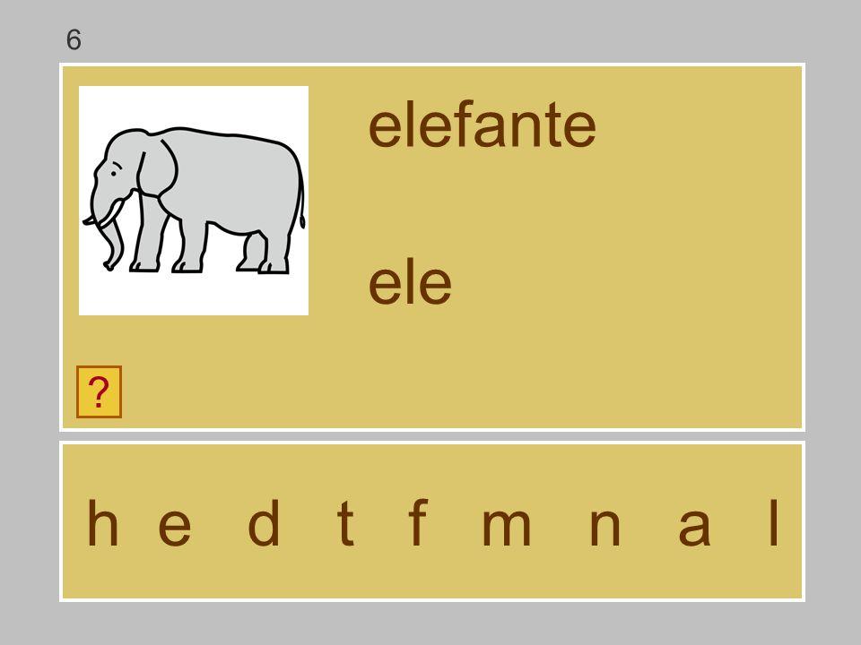 6 elefante ele h e d t f m n a l