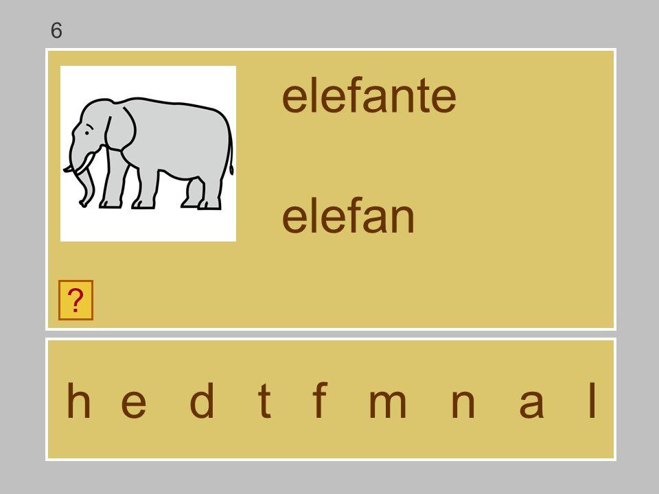 6 elefante elefan h e d t f m n a l
