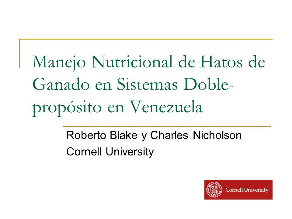 Roberto Blake y Charles Nicholson Cornell University