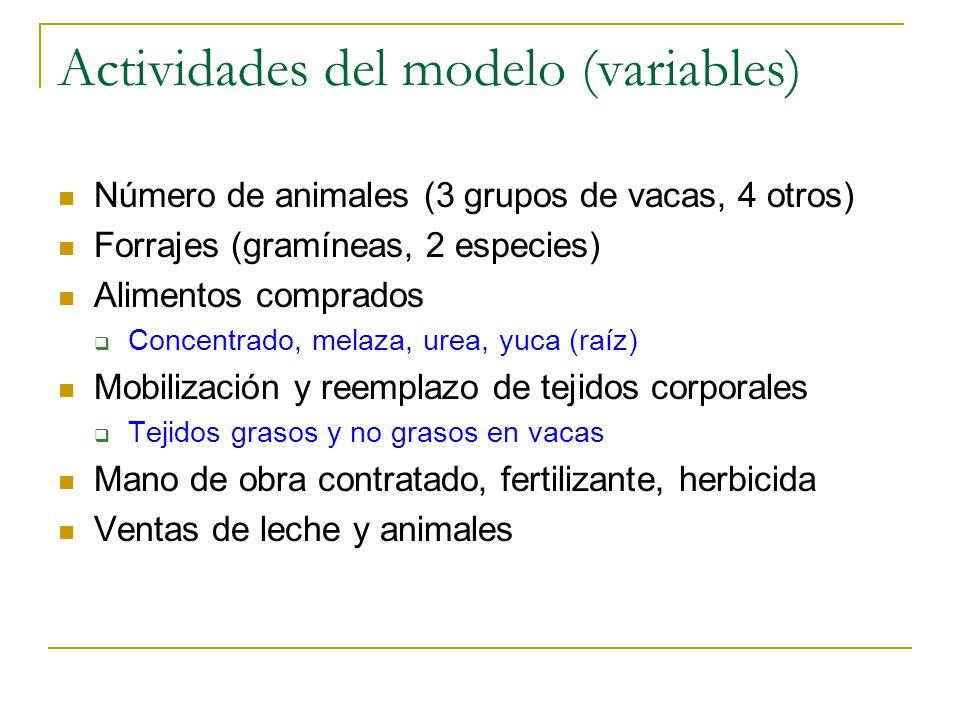 Actividades del modelo (variables)