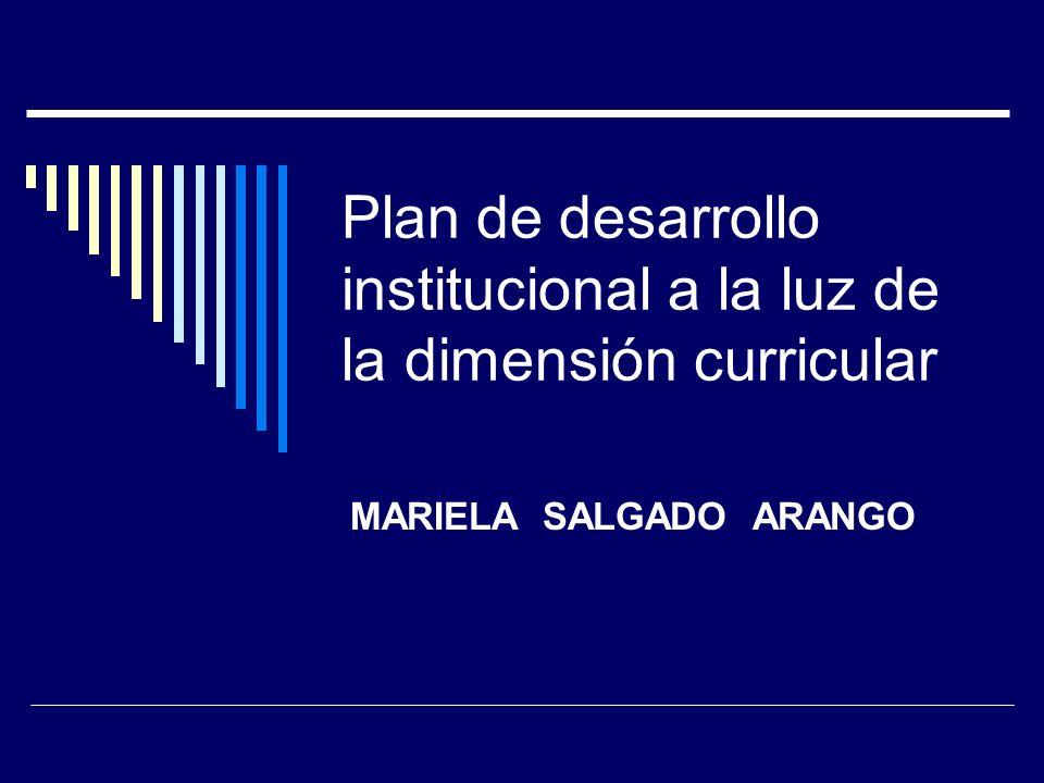 Plan de desarrollo institucional a la luz de la dimensión curricular