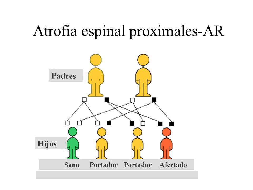 Atrofia espinal proximales-AR