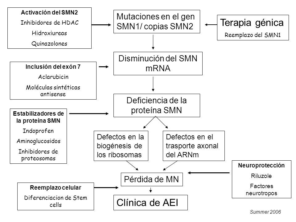 Estabilizadores de la proteína SMN