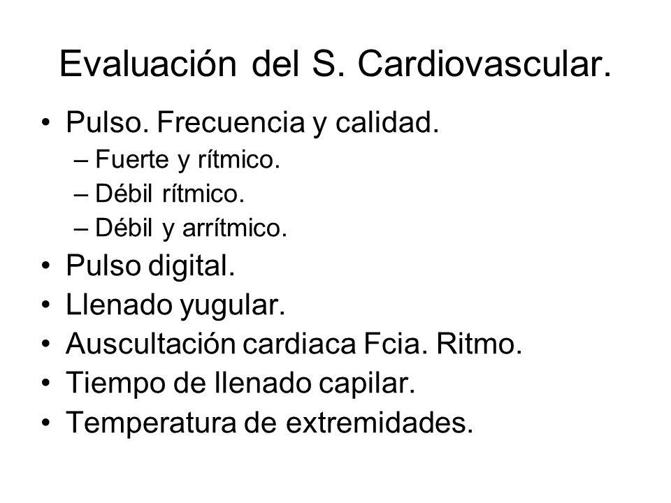 Evaluación del S. Cardiovascular.