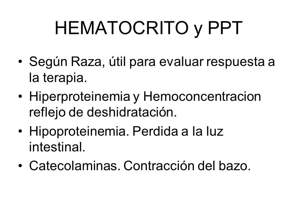 HEMATOCRITO y PPT Según Raza, útil para evaluar respuesta a la terapia. Hiperproteinemia y Hemoconcentracion reflejo de deshidratación.