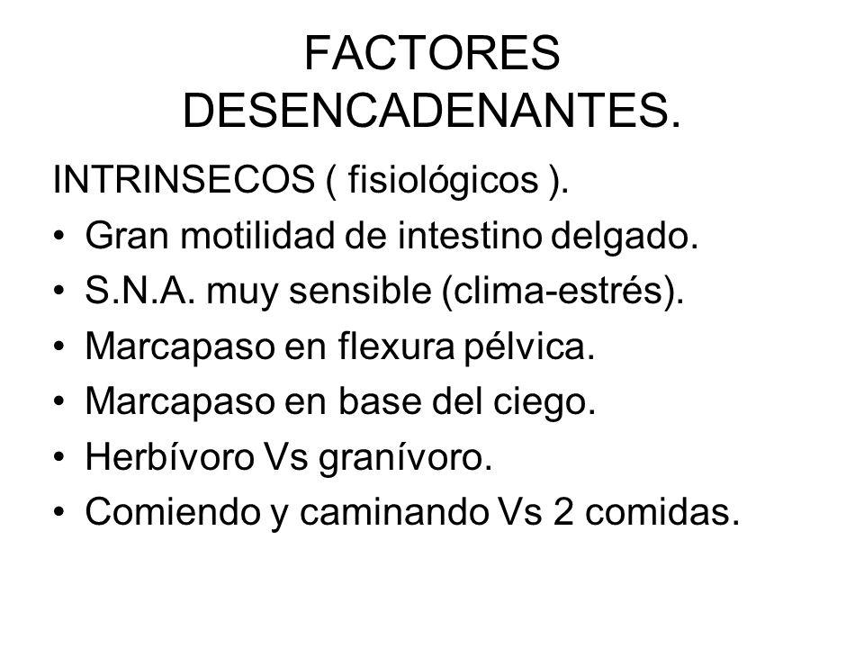 FACTORES DESENCADENANTES.