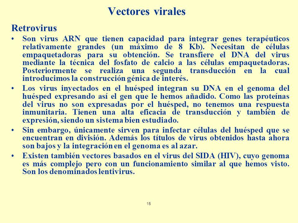 Vectores virales Retrovirus