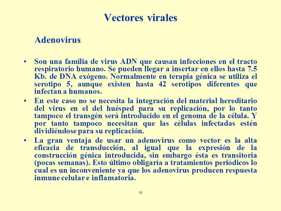 Vectores virales Adenovirus