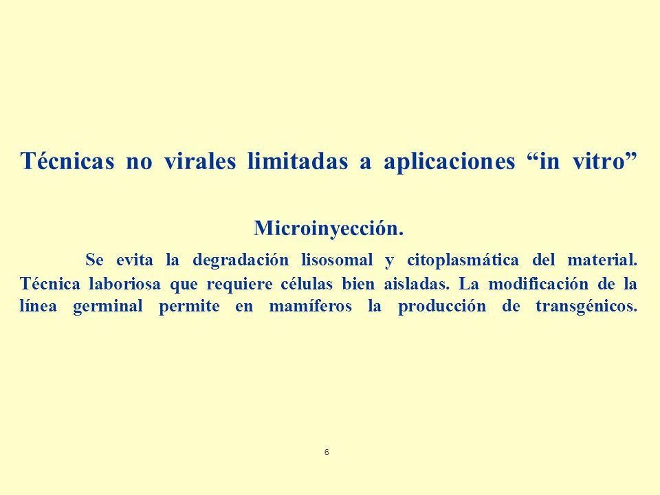 Técnicas no virales limitadas a aplicaciones in vitro Microinyección