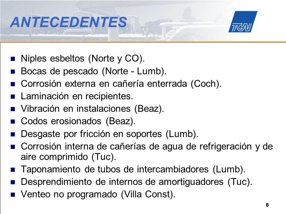 ANTECEDENTES Niples esbeltos (Norte y CO).