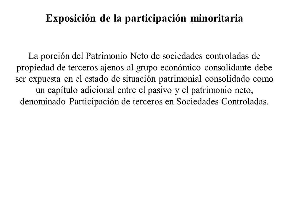 Exposición de la participación minoritaria