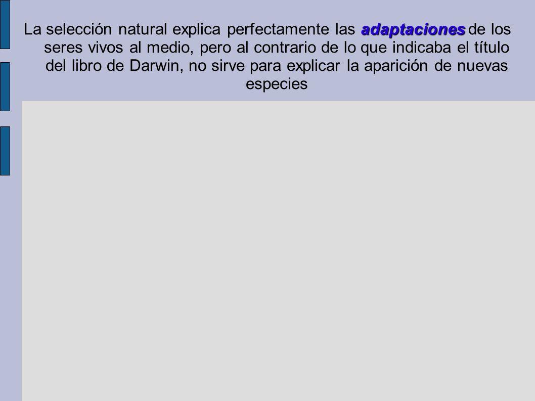 La selección natural explica perfectamente las adaptaciones de los seres vivos al medio, pero al contrario de lo que indicaba el título del libro de Darwin, no sirve para explicar la aparición de nuevas especies