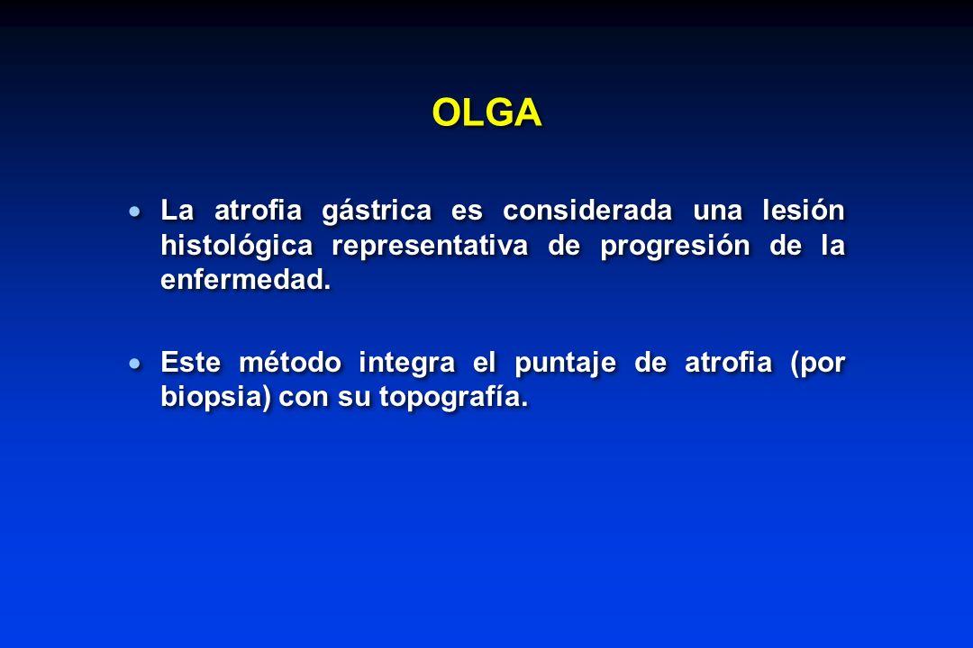 OLGA La atrofia gástrica es considerada una lesión histológica representativa de progresión de la enfermedad.