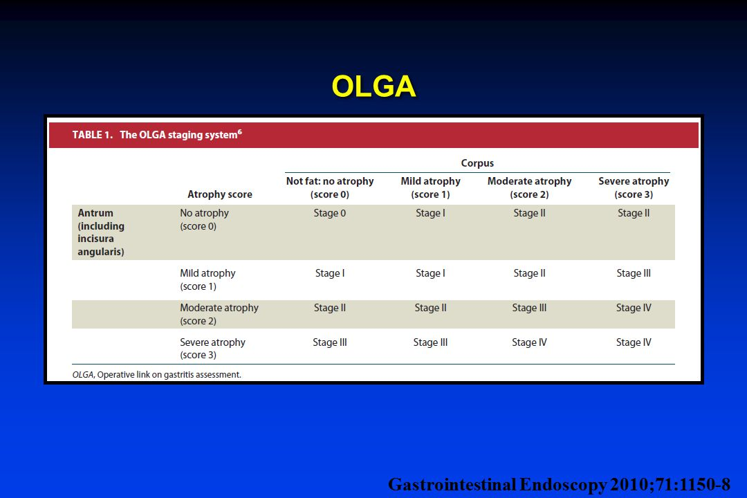 OLGA Gastrointestinal Endoscopy 2010;71:1150-8