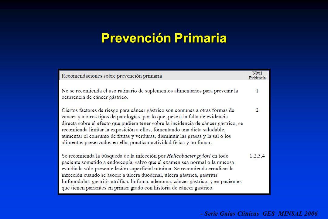 - Serie Guías Clínicas GES MINSAL 2006