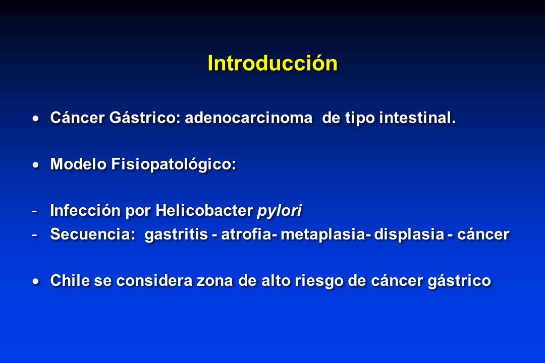 Introducción Cáncer Gástrico: adenocarcinoma de tipo intestinal.