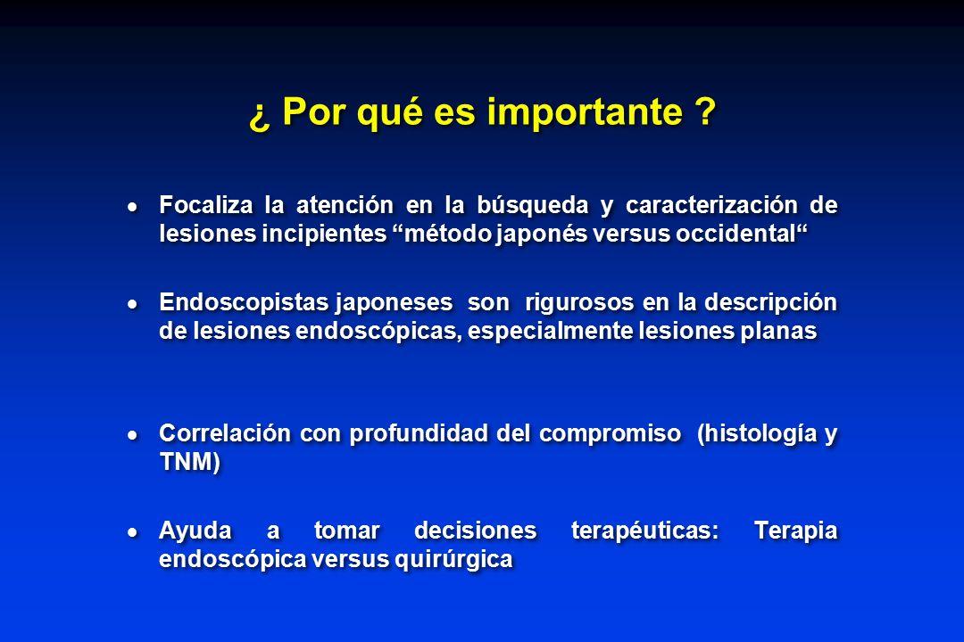 ¿ Por qué es importante Focaliza la atención en la búsqueda y caracterización de lesiones incipientes método japonés versus occidental