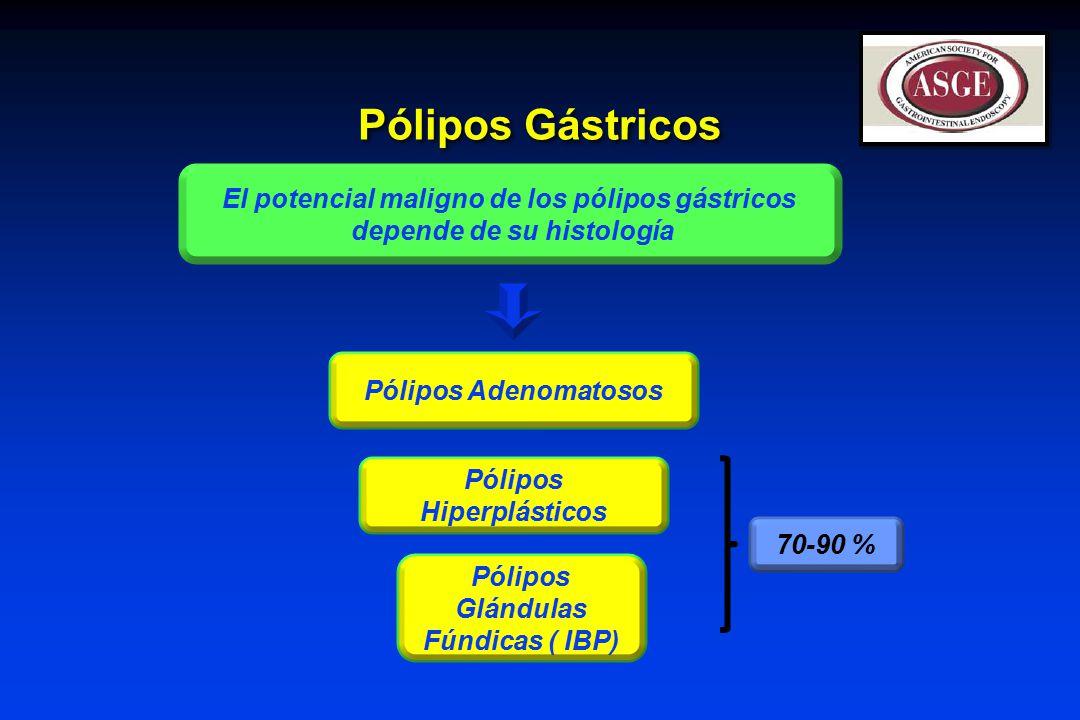 Pólipos Gástricos El potencial maligno de los pólipos gástricos