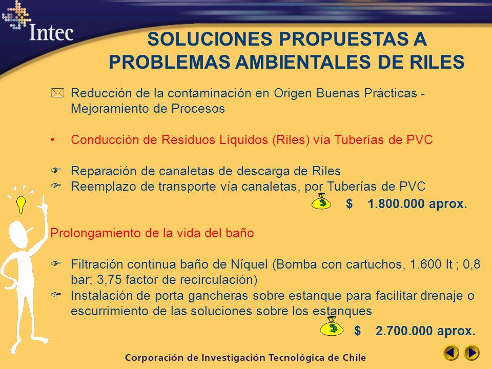 SOLUCIONES PROPUESTAS A PROBLEMAS AMBIENTALES DE RILES