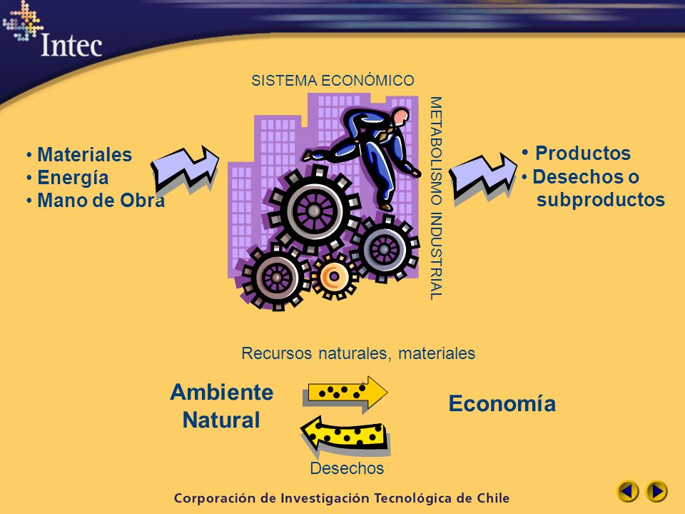 Productos Ambiente Economía Natural Materiales Desechos o Energía