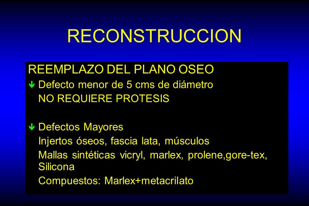 RECONSTRUCCION REEMPLAZO DEL PLANO OSEO