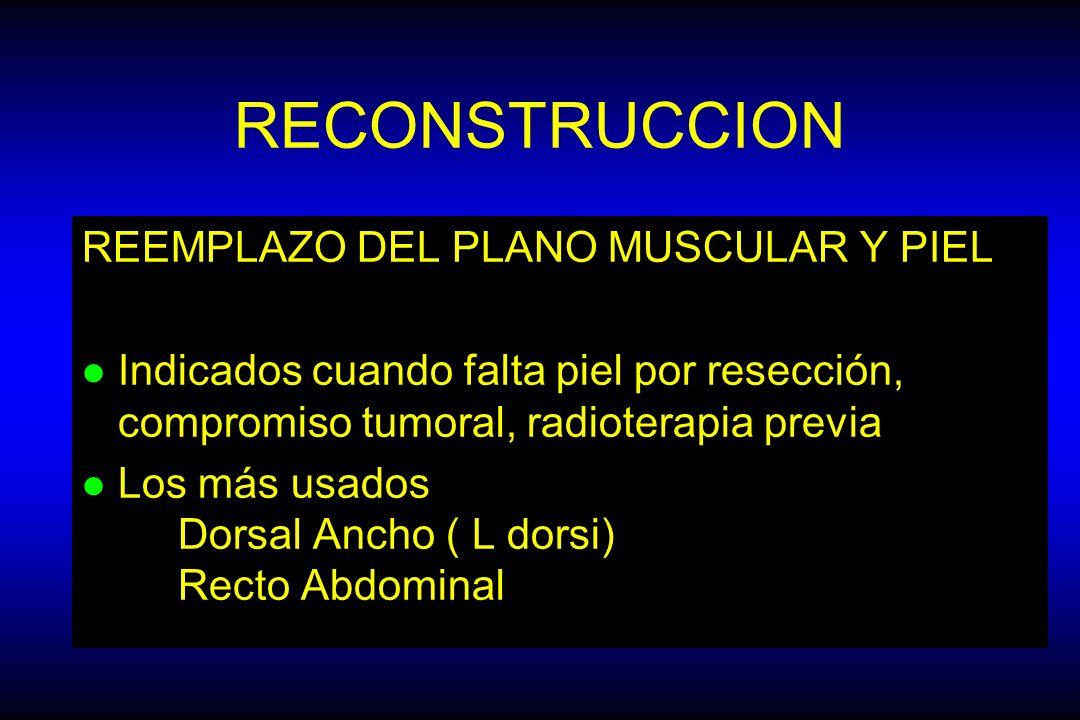 RECONSTRUCCION REEMPLAZO DEL PLANO MUSCULAR Y PIEL