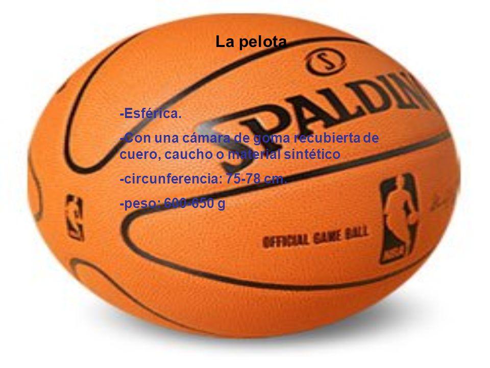 La pelota -Esférica. -Con una cámara de goma recubierta de cuero, caucho o material sintético. -circunferencia: 75-78 cm.