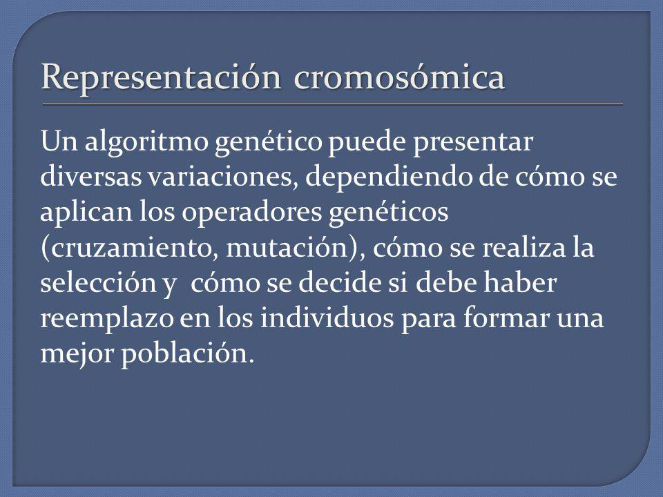 Representación cromosómica