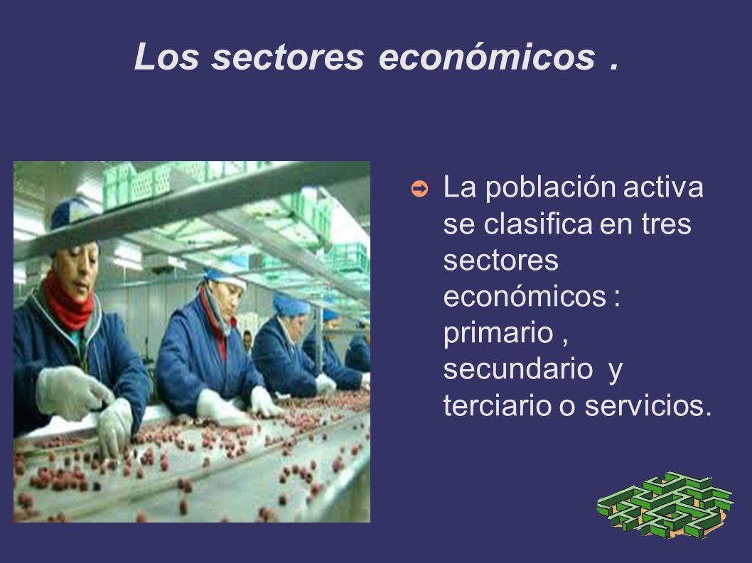 Los sectores económicos .