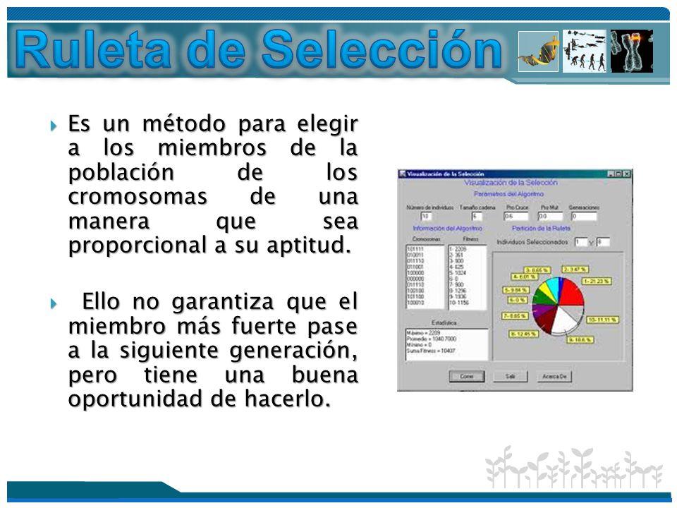Ruleta de Selección Es un método para elegir a los miembros de la población de los cromosomas de una manera que sea proporcional a su aptitud.