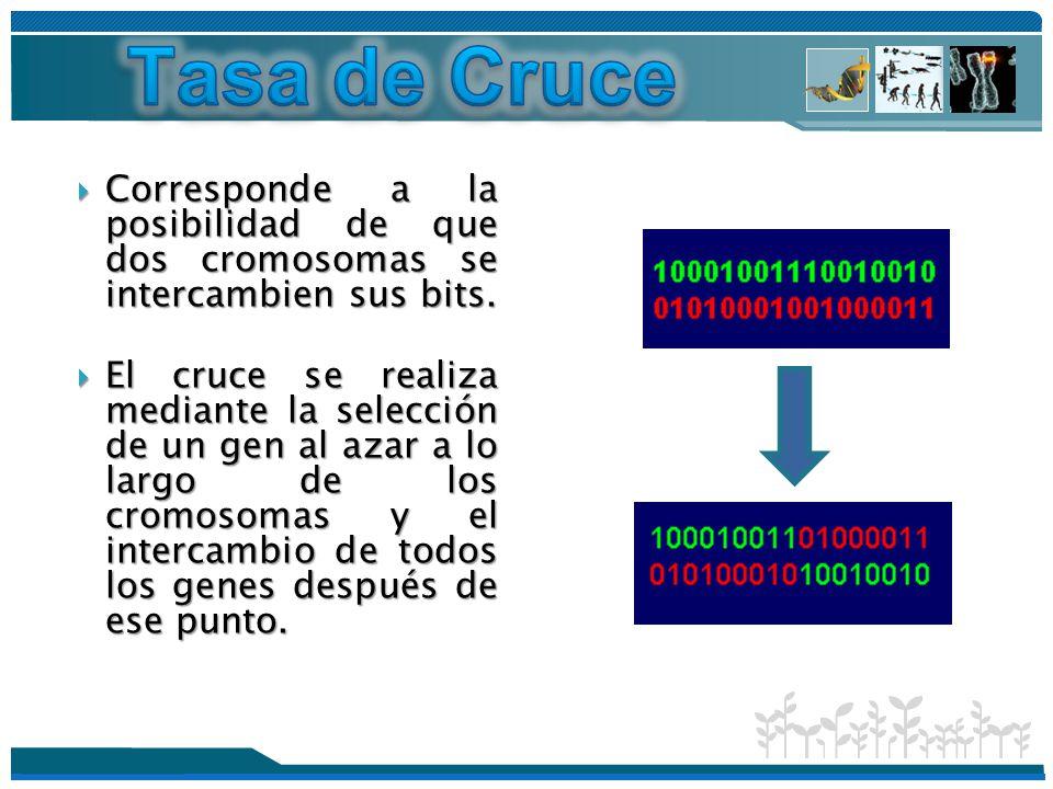 Tasa de Cruce Corresponde a la posibilidad de que dos cromosomas se intercambien sus bits.