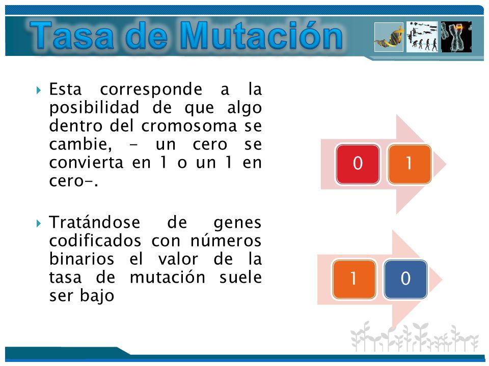 Tasa de Mutación Esta corresponde a la posibilidad de que algo dentro del cromosoma se cambie, - un cero se convierta en 1 o un 1 en cero-.