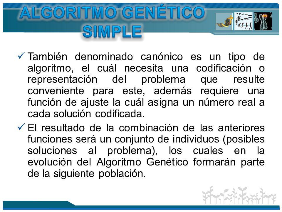 ALGORITMO GENÉTICO SIMPLE