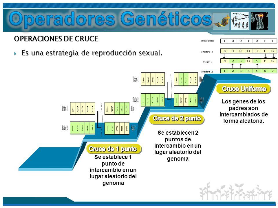 Operadores Genéticos OPERACIONES DE CRUCE