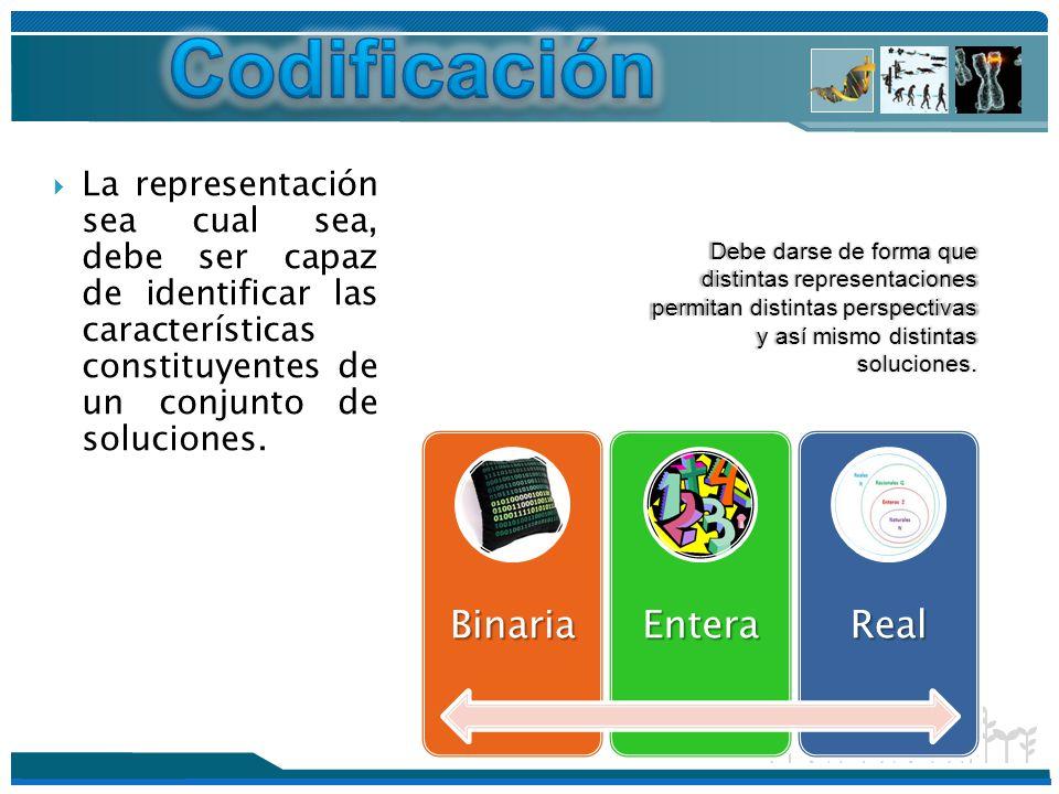 Codificación Binaria Entera Real