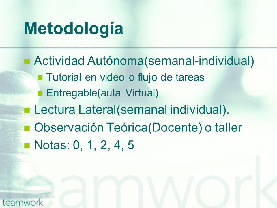 Metodología Actividad Autónoma(semanal-individual)