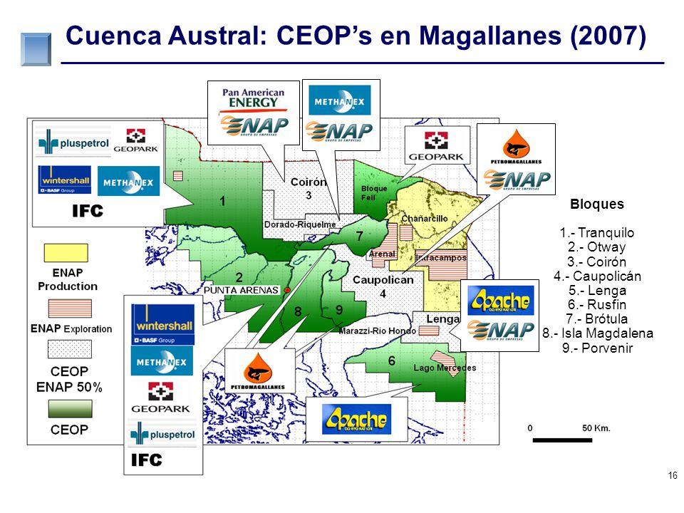 Cuenca Austral: CEOP's en Magallanes (2010)
