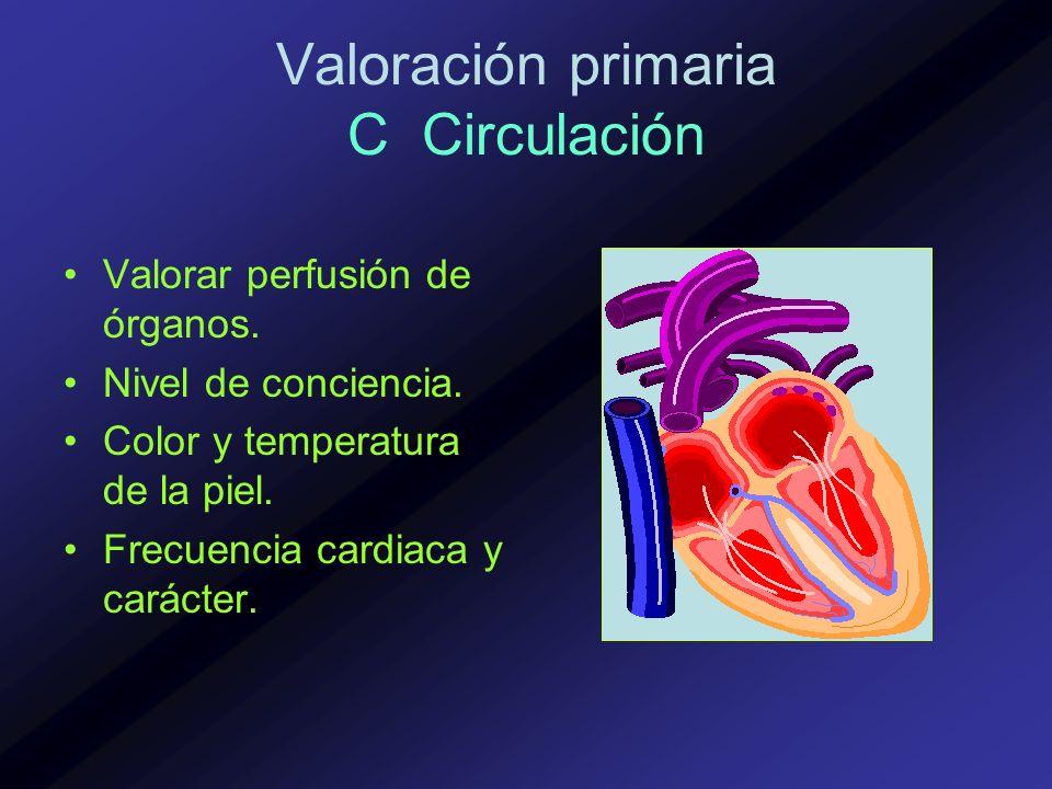 Valoración primaria C Circulación