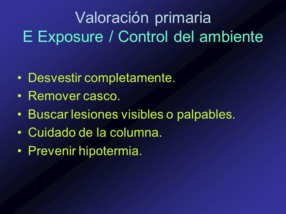 Valoración primaria E Exposure / Control del ambiente